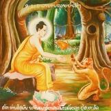 https://mytreetv.files.wordpress.com/2011/04/buddha_with_monkey.jpg?w=300