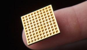 chip.jpg-920x526